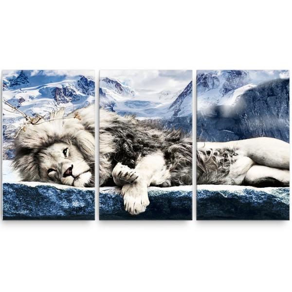 Leão Branco Top Alto padrão!