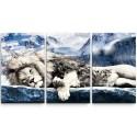 Quadros Decorativos Leão Branco