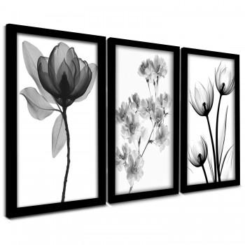 """""""Trio Quadros Decorativos Raio x Flores Black"""