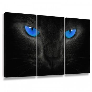 """""""Quadros Decorativos Gato Preto Olhos Azuis"""